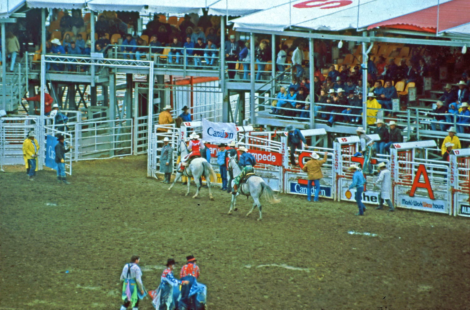 Stampede Calgary Größtes Rodeo in Nordamerika ©HorstReitz1992