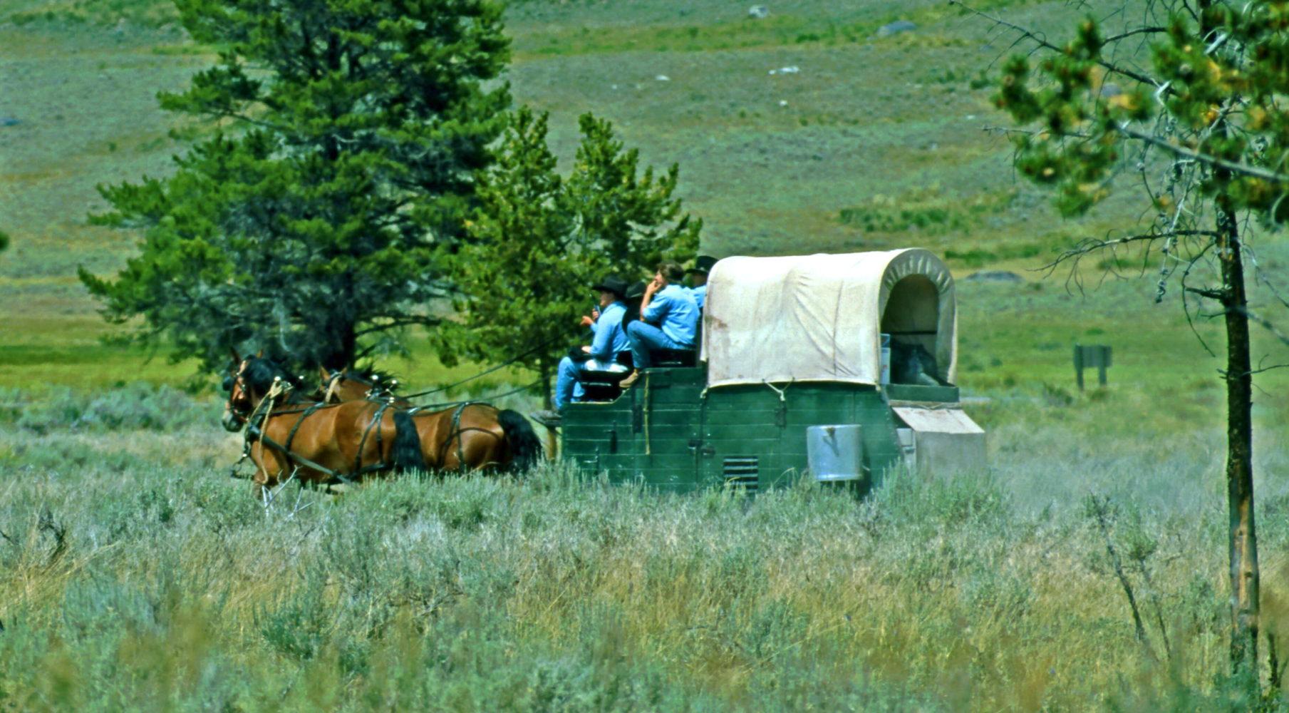 Planwagen in Kanada © Horst Reitz 1992