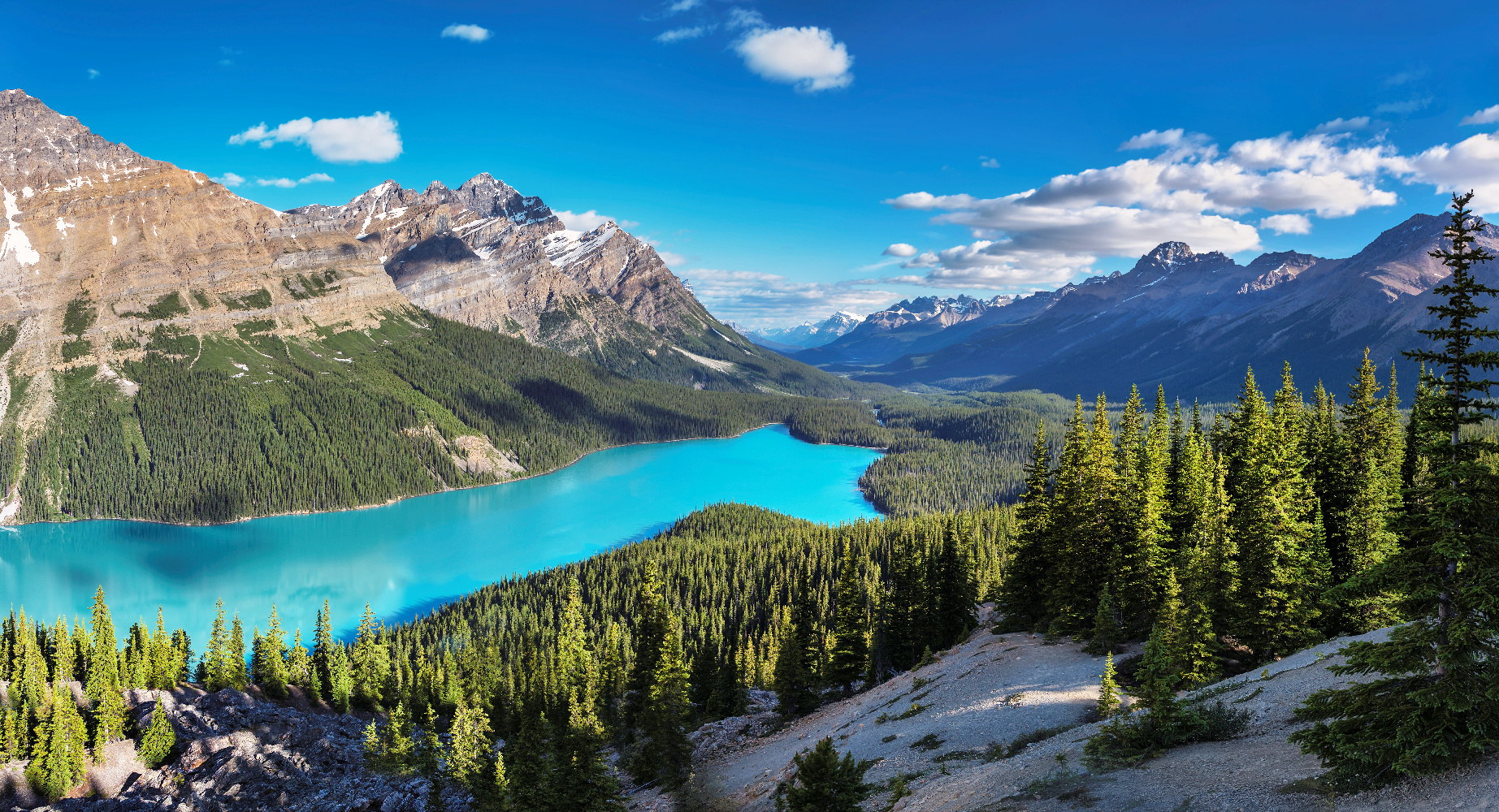 Alberta Peyto Lake Rocky Mountains, Banff NP ©123RF