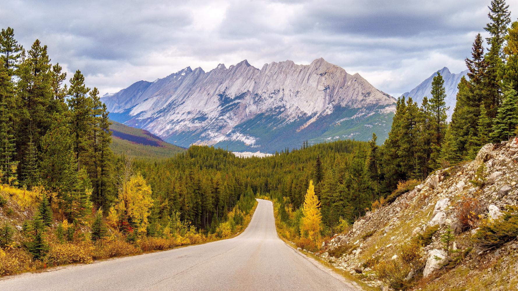 Colin Gebirge von Maligne Lake Road bei Jasper NP ©123RF
