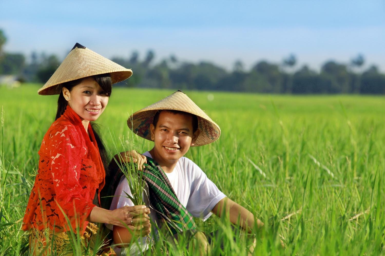 6762295 – asian farmer